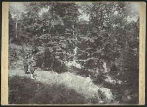 Връх Еледжик Местността Любишко калe 1914 г
