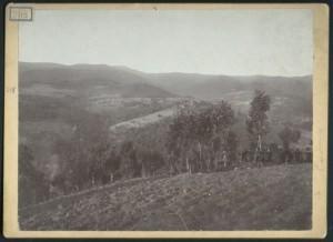 Връх Еледжик общ изглед 1914г-